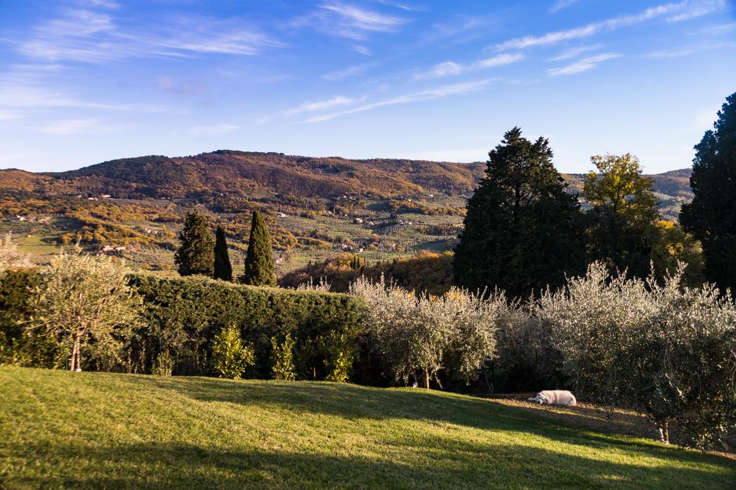 T250 Elaine Poggi, Tuscany, Italy