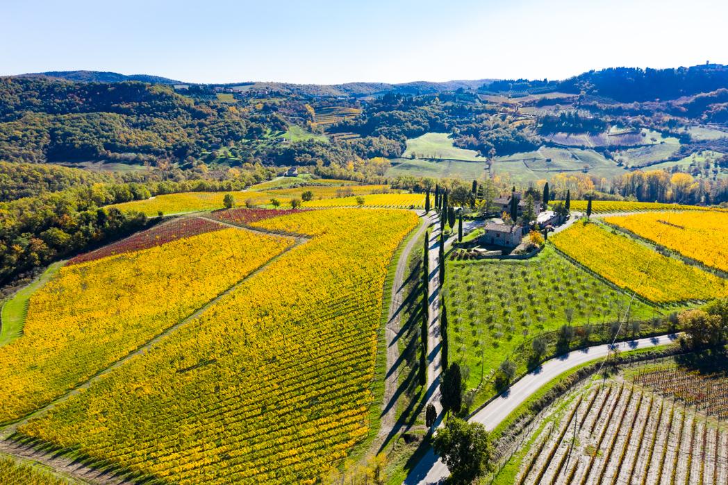 P474 Andrea Poggi, Tuscany Italy