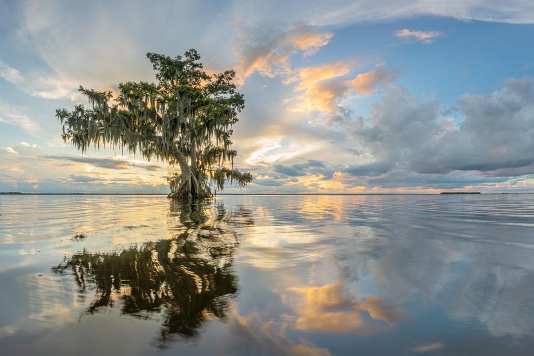 P483 John Doddato, Florida USA