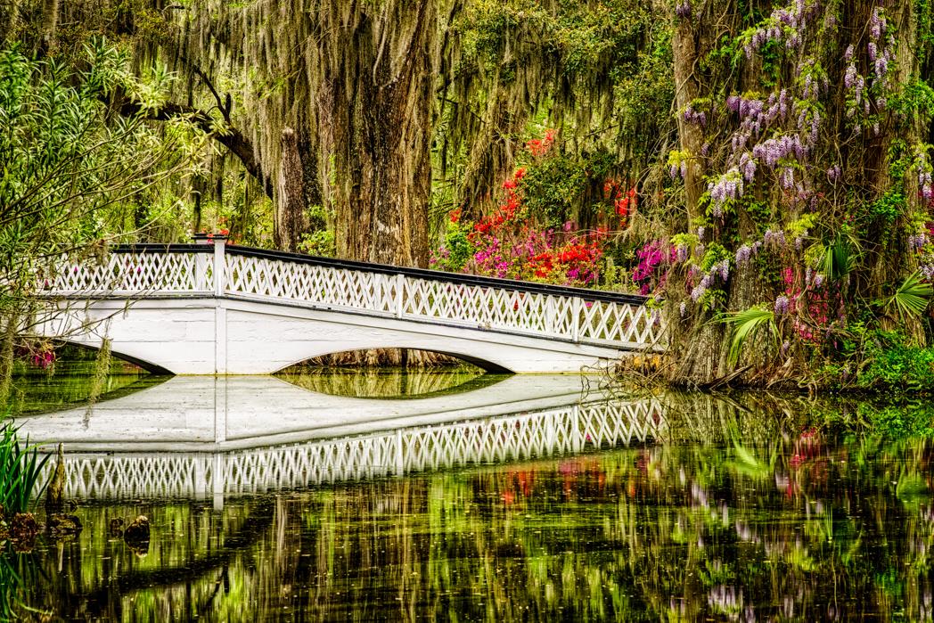 P302 Helen Bradshaw, South Carolina USA